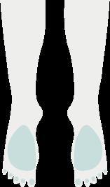 両足の甲指イラスト